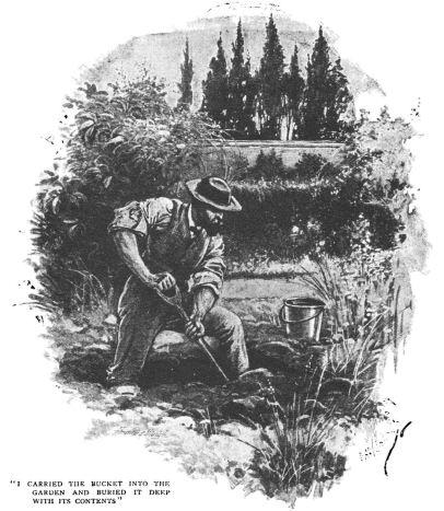 The Purple Death by W. L. Alden